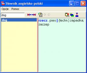 Translator angielsko polski