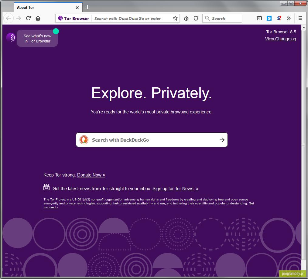 tor browser bundle alpha гирда